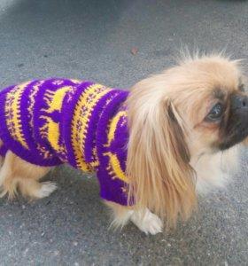 Вязаный свитер для собак и кошек
