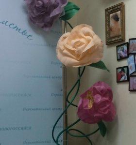 Ростовые цветы 🌺