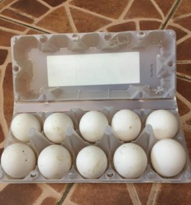 Яйца куриные домашние пищевые