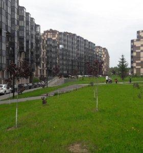 Квартира, свободная планировка, 42 м²