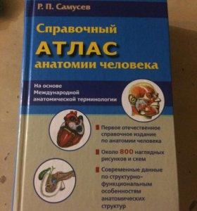 Анатомия атлас