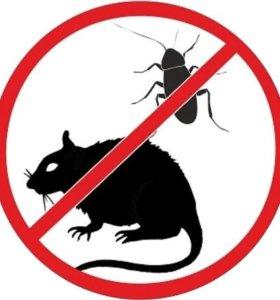 Уничтожение клопов, клещей, тараканов, крыс.