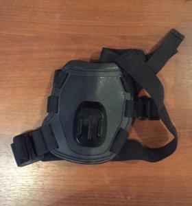 Крепление экшн камеры для собаки