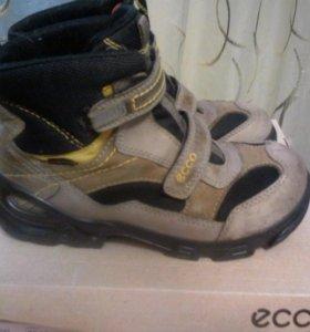зимние ботинки экко, в хорошем состоянии