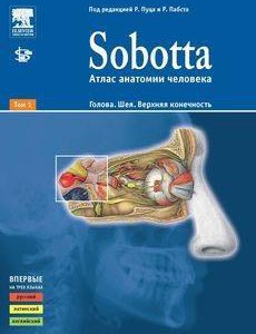 Атлас по анатомии sobbota