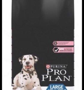 Pro Plan Adalt Large Breed Athletik Sensitive Skin
