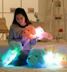 Собака с подсветкой