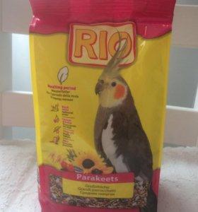 Корм для средних попугает рио