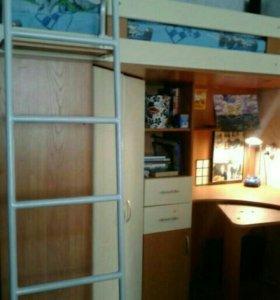 Детская кровать со шкафом. Длина 2,20, высота 1,60
