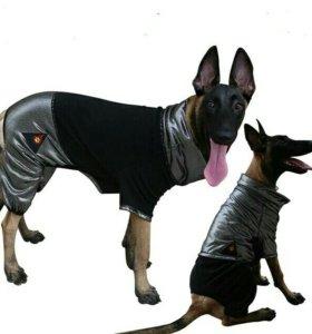 Комбинизон для собаки