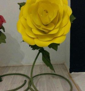 Огромные цветы