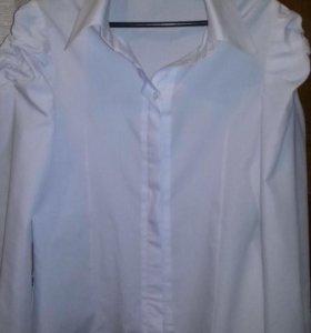 Блузка парадная