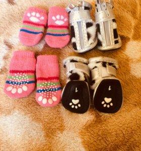 Продам носочки и ботиночки на маленькую собачку