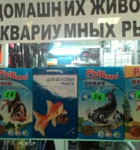 Рыбята