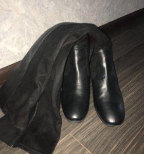 Zara сапоги ( ботфорты )