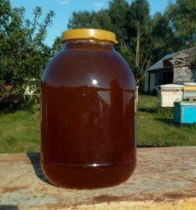 Мед целебный из своей пасеки