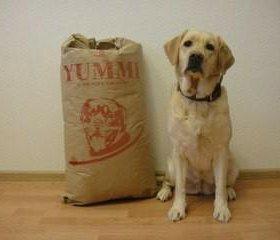 Сухой корм Yummi для крупных и средних пород 🐕