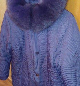 Куртища  зимняя