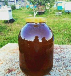 Мёд cамый полезный