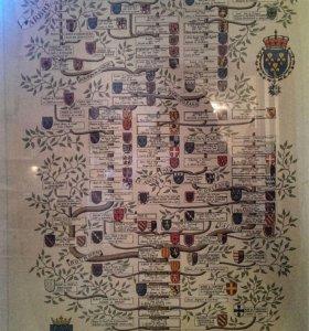 Гравюра родословной аристократичной семьи Бурбон