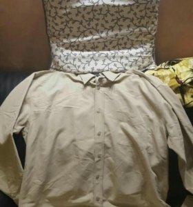 Рубашки wexler 56 размер