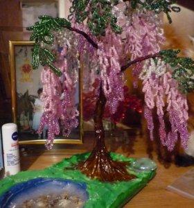 деревце глицинья