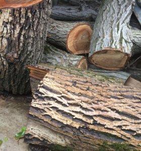 Брёвна орех
