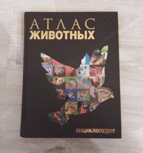 Энциклопедия «Атлас животных»