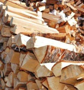 Берёзовые дрова истра звенигород дедовск нахабино