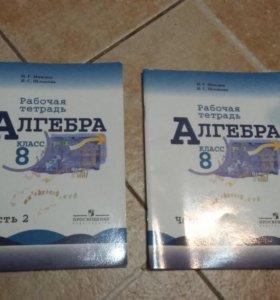 Рабочая тетрадь алгебра 8 класс