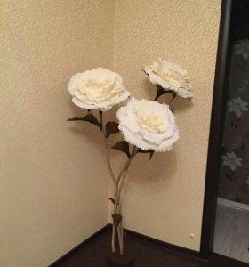 Ростовые цветы!!!