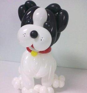 Собачки 🐕 символ Нового года,оформление шарами.