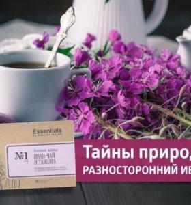 Иван-чай и таволга
