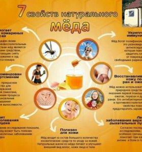 Мёд,забрус,подмор,прополис,гомогенат,сотовый мёд