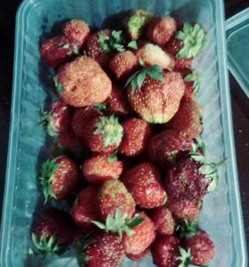 Свежемороженые ягоды