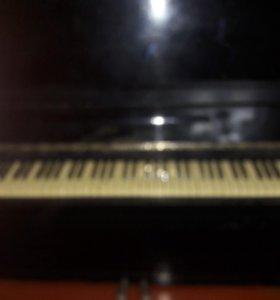 пианино...Енисей..