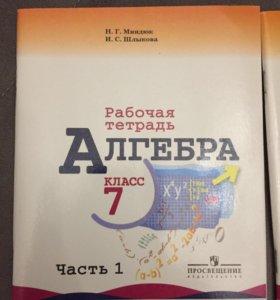 Рабочая тетрадь Алгебра 7 класс