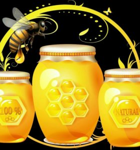 Мёд подсолнечника