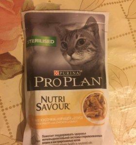 корм для кошек ProPlan