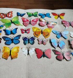 Бабочки на магните