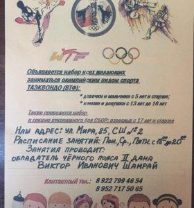 Секция олимпийского вида спорта Тхэквондо (ВТФ)