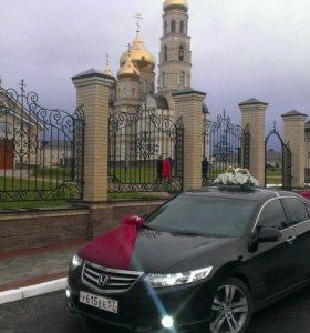 Аренда свадебных лент на капот автомобиля