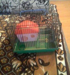 Клетка, домик и колесо для хомячков