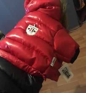 Куртка для вашей любимой собачки
