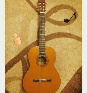 Гитара, зимний чехол и прибор для настройки гитары