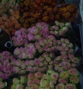 Розы свежесрезанные цветы