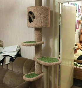 Домик с когтеточкой комплекс для кошки