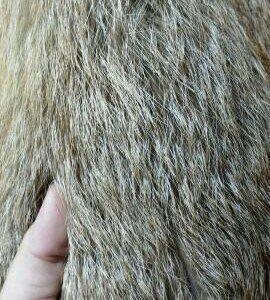 Продам меховую желетку из цельной лисы