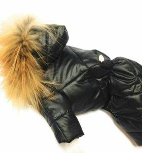 Одежда для собачек, зимний костюмчик