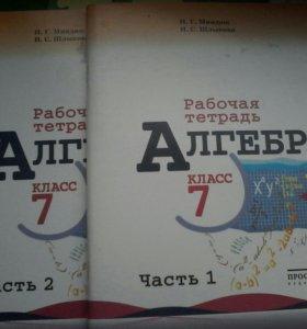 Рабочая тетрадь по Алгебое за 7 класс Миндюк